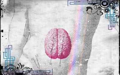 Psicobiotica: il Cervello Enterico. Cosa lo costituisce? Come Funziona?