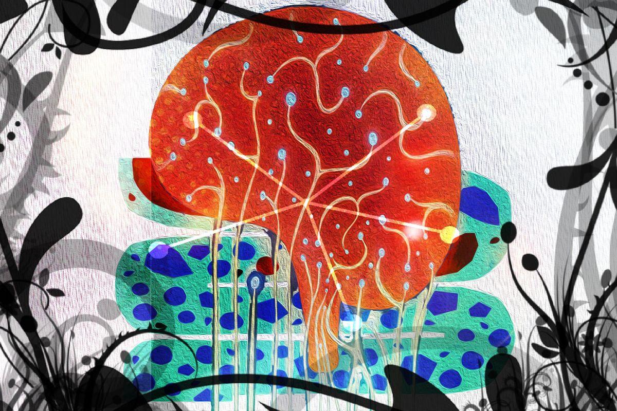 Psicobiotici: Come agiscono i Probiotici sulla Mente? Quali Probiotici scegliere?