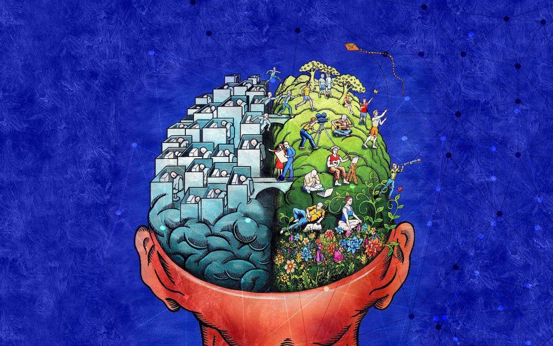Informazioni essenziali e Curiosità sul Cervello Umano
