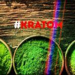 kratom-informazioni-effetti-esperienze-pericoli