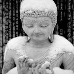 mindfulness-digitale