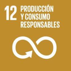 ODS Producción y consumo responsables - Responsible consumption and production