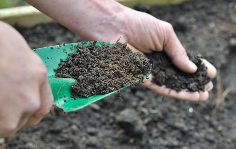 Compost Per Lorto Istruzioni Per Il Fai Da Te