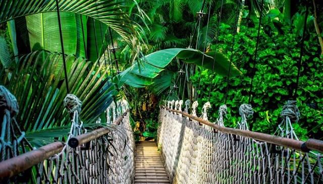 Caraibi-avventure tropicali