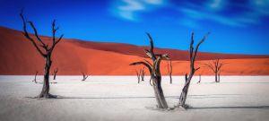 namibia_sossusvlei_safari_treno_shongololo