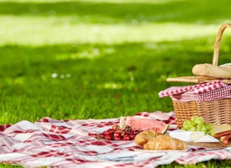 picnic_chic