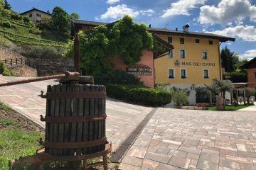 Trentino_gemmedigusto_enogastronmia_eventi