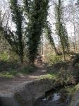 Entrada para o Moseley Bog