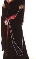 Vestido de Luto de Arwen - Manga