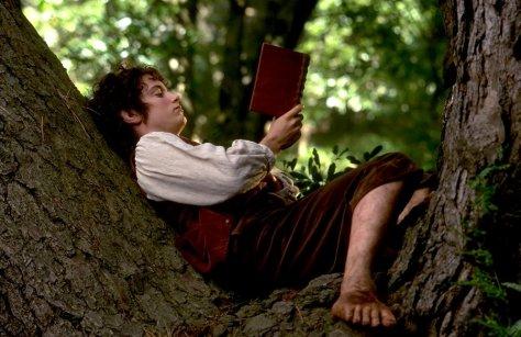 Frodo lendo