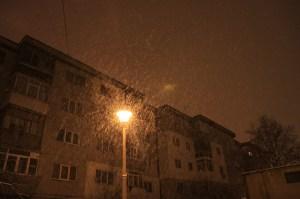 iarna-02