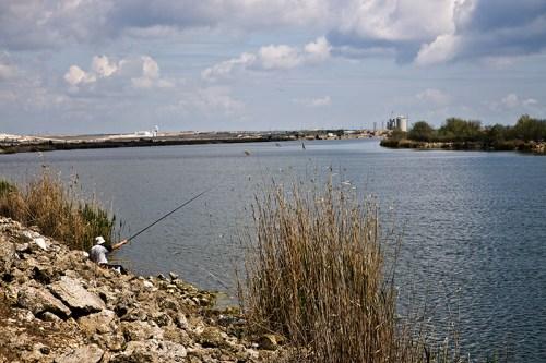 pescuit03