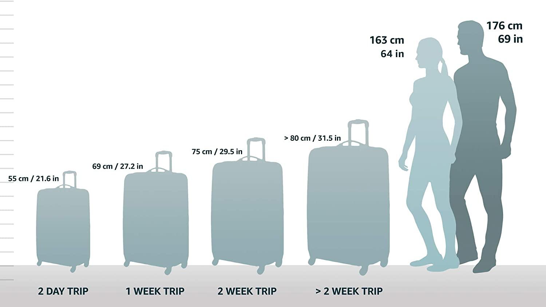 La valise DELSEY PARIS – TURENNE, faut-il l'acheter ? Notre avis après enquête