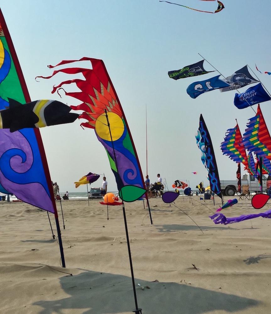 Things to Do in Long Beach, WA - Kite Festival