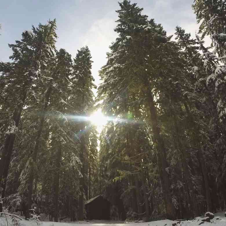 A perfect winter escape to Mount Rainier National Park.