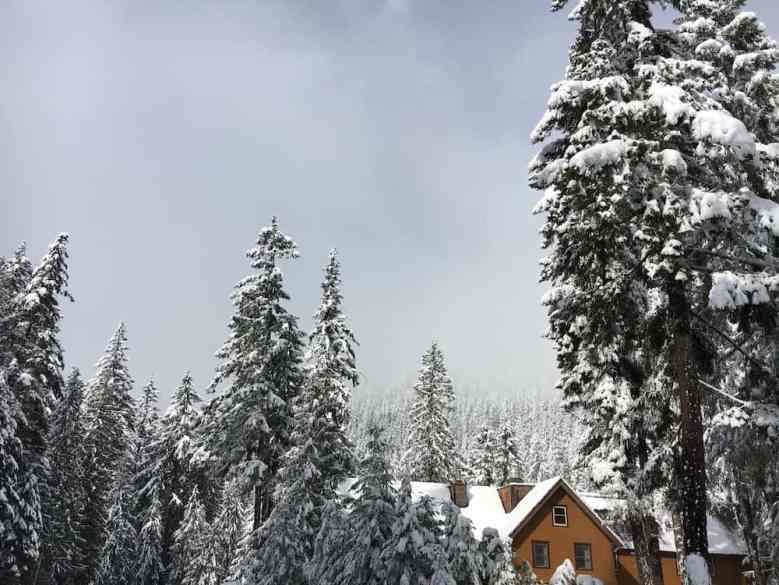 Rainier Winter Hike - The National Park Inn in Longmire