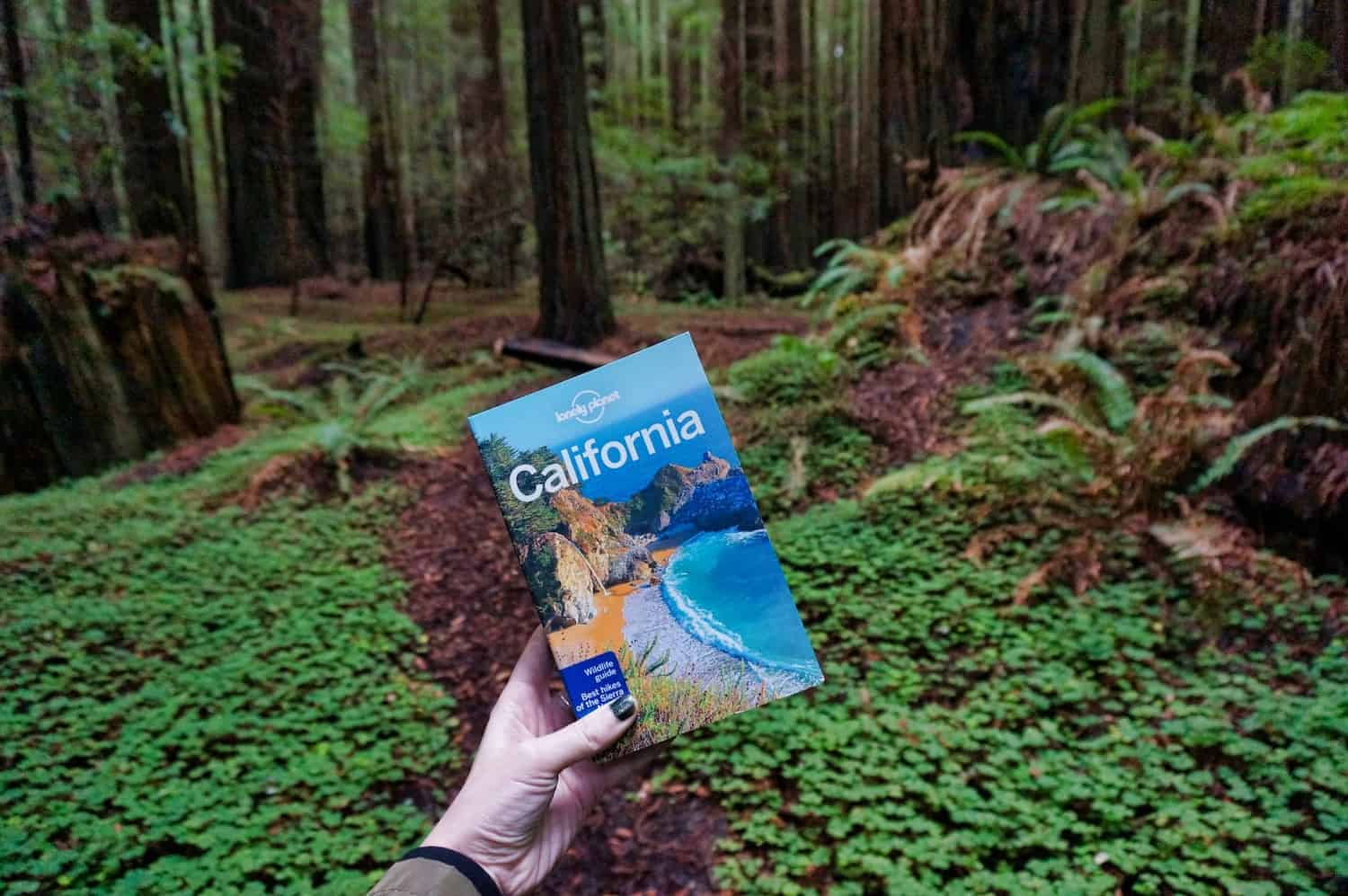California Redwoods - Lonely Planet Guidebook