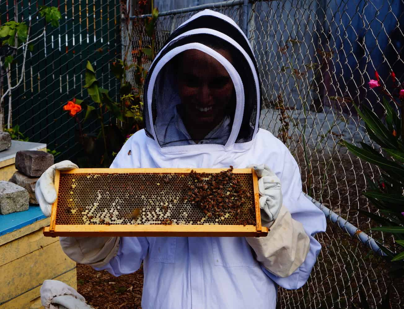 40 Before 40 - Beekeeping 1