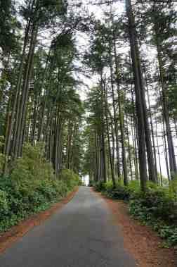 Anacortes Travel Guide - Washington Park