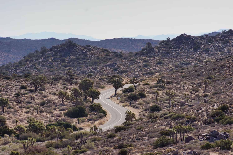 Joshua Tree Weekend Itinerary - Road inside the park