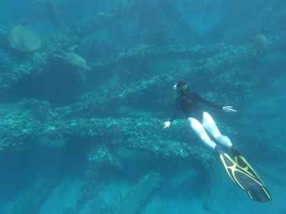 UnCruise Hawaii - Day 5 - Snorkeling with Honu