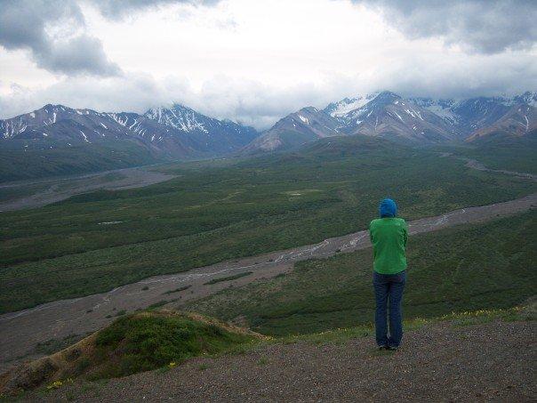 Denali National Park - Broad Pass