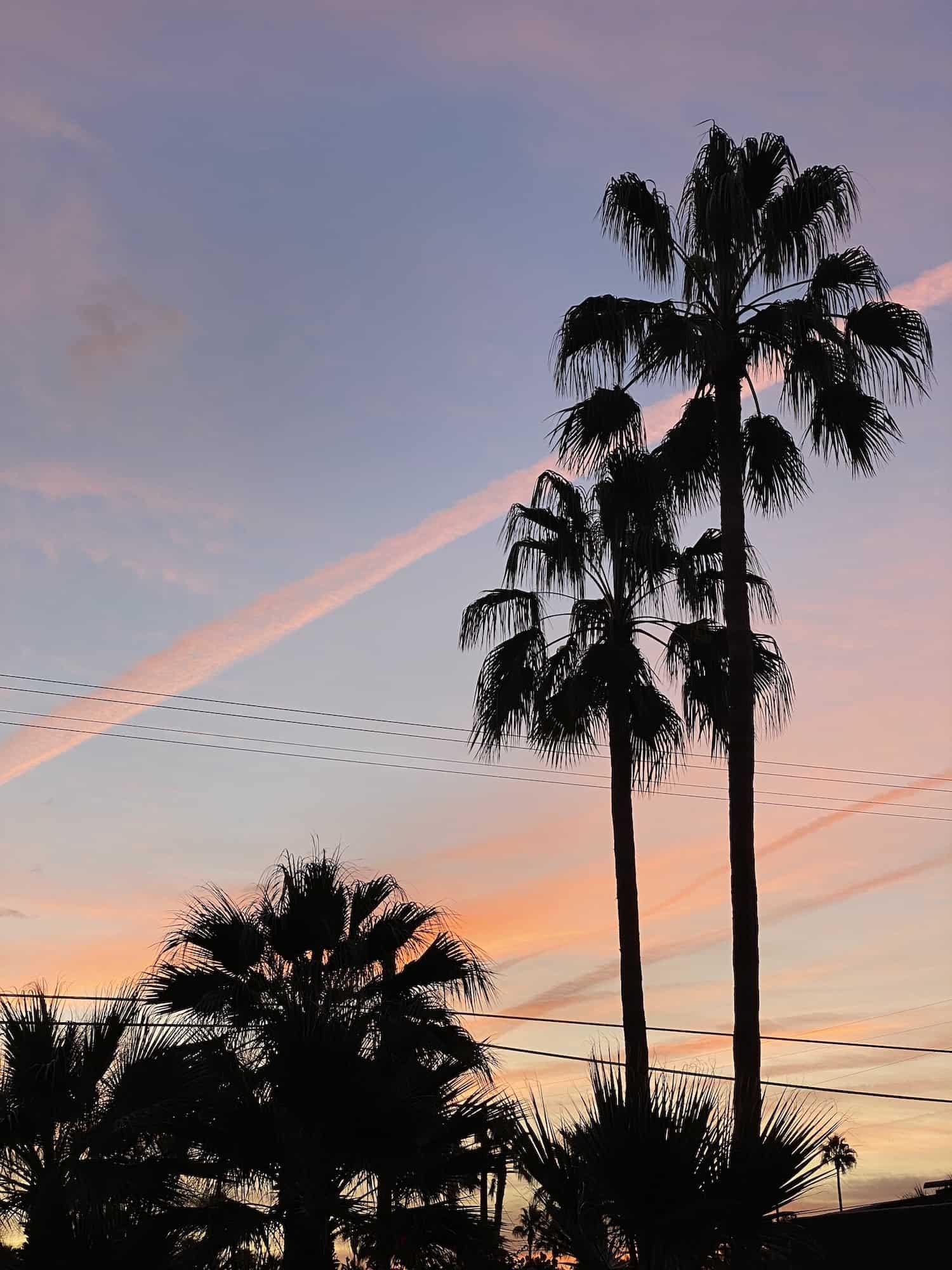 Palm Springs Weekend