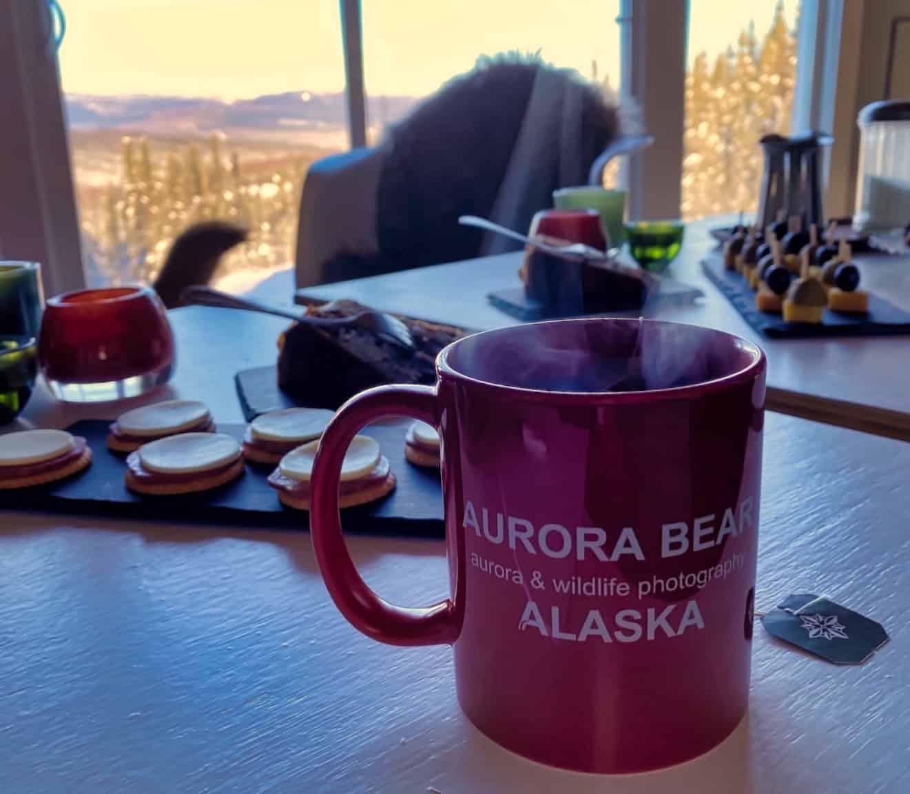 Alaska Aurora - Aurora Bear