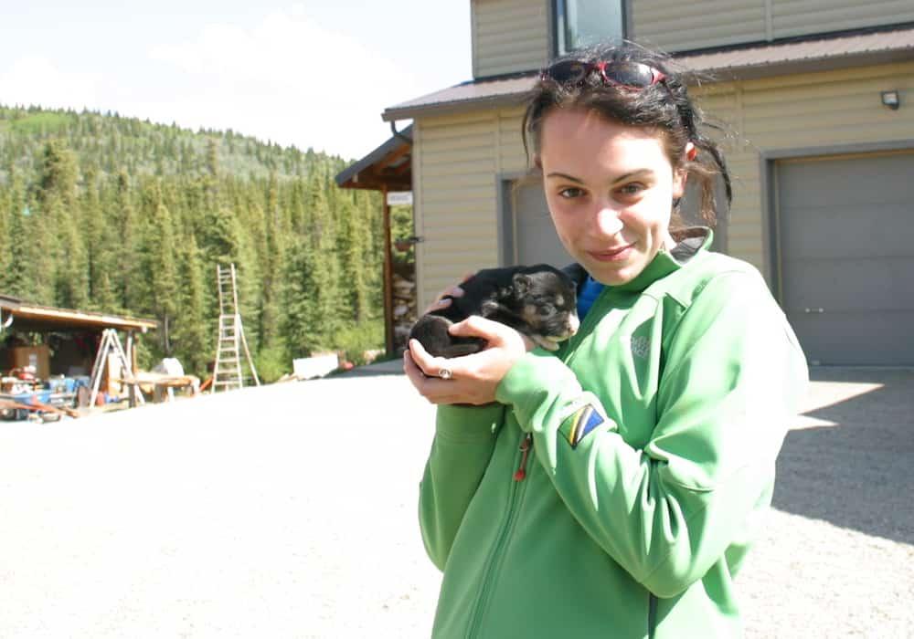 Denali Excursions - Husky Homestead