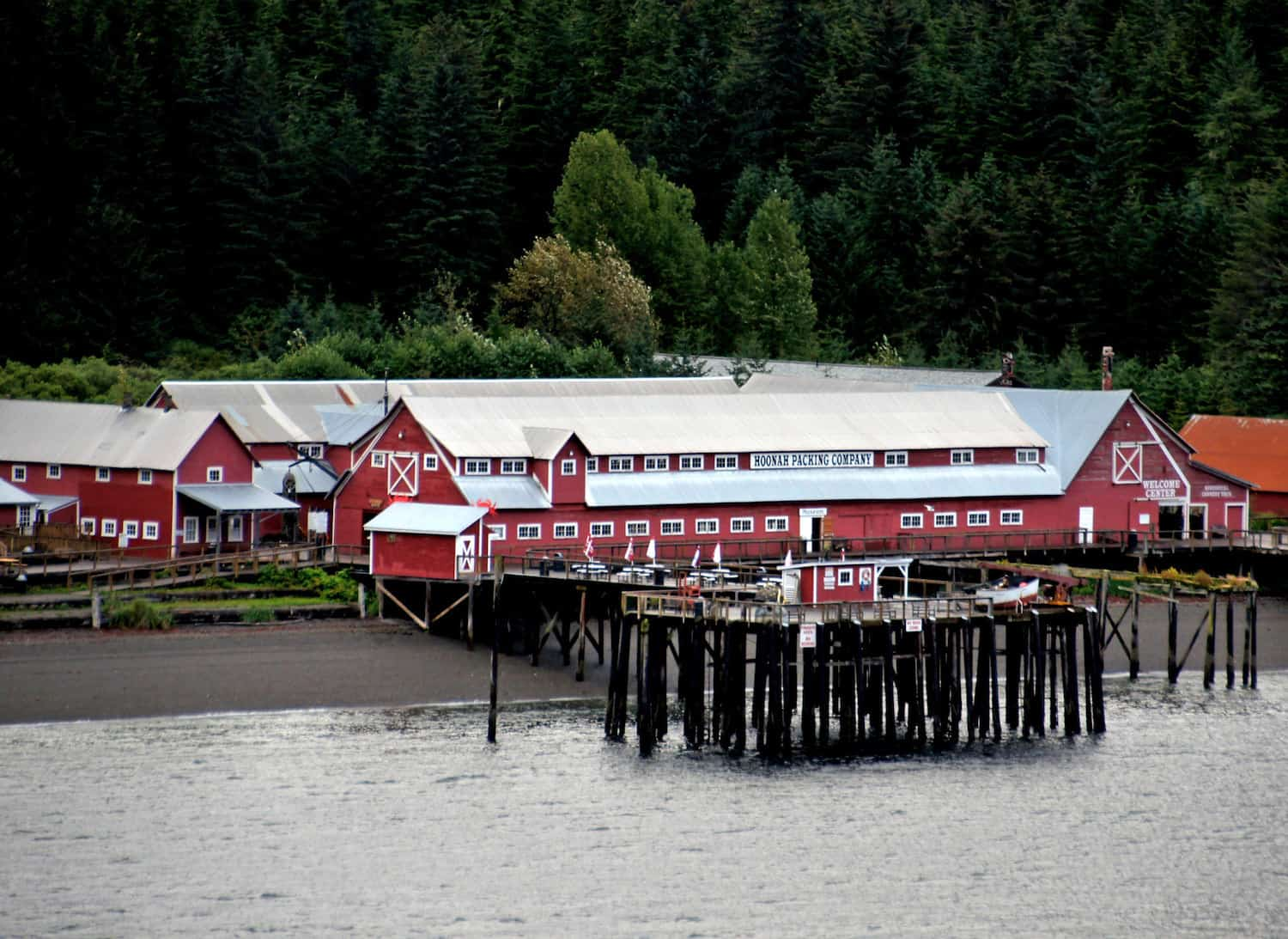 Icy Strait Point Excursions - Bernard Spragg