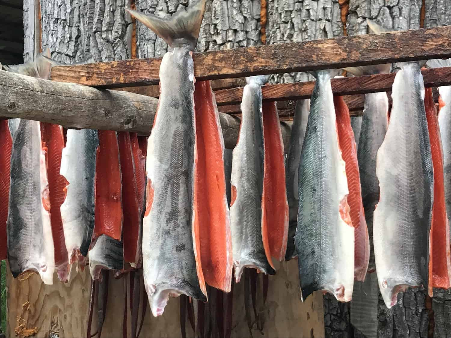 Skagway Cruise Excursions - Smoked Salmon