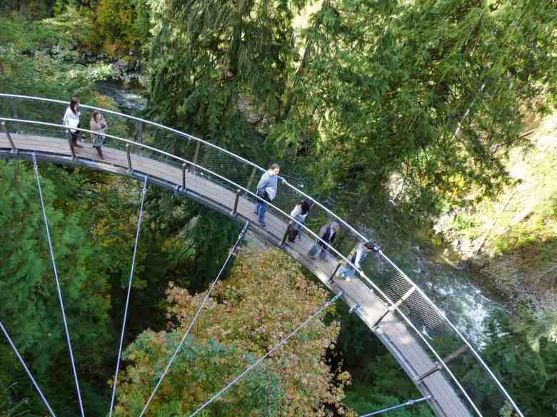Vancouver Cruise Excursions - Capilano Suspension Bridge
