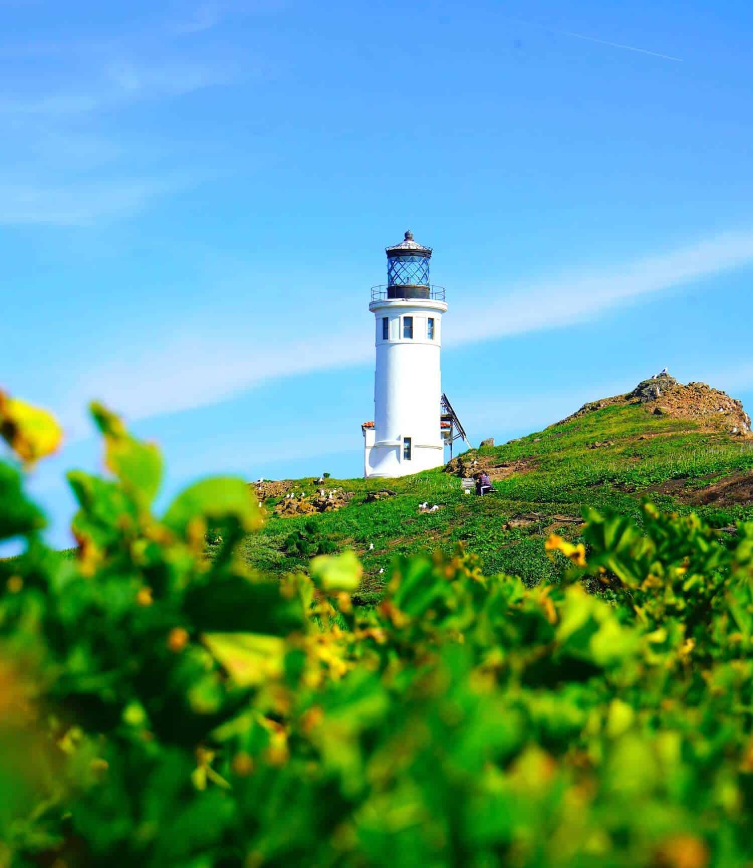 National Parks in California - Channel Islands