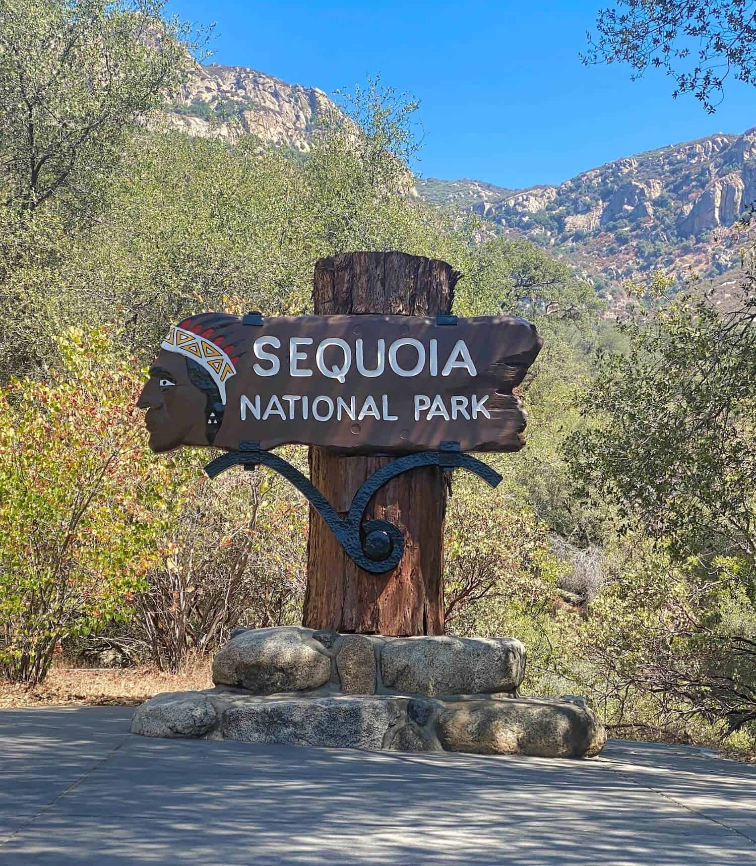 National Parks in California - Sequoias