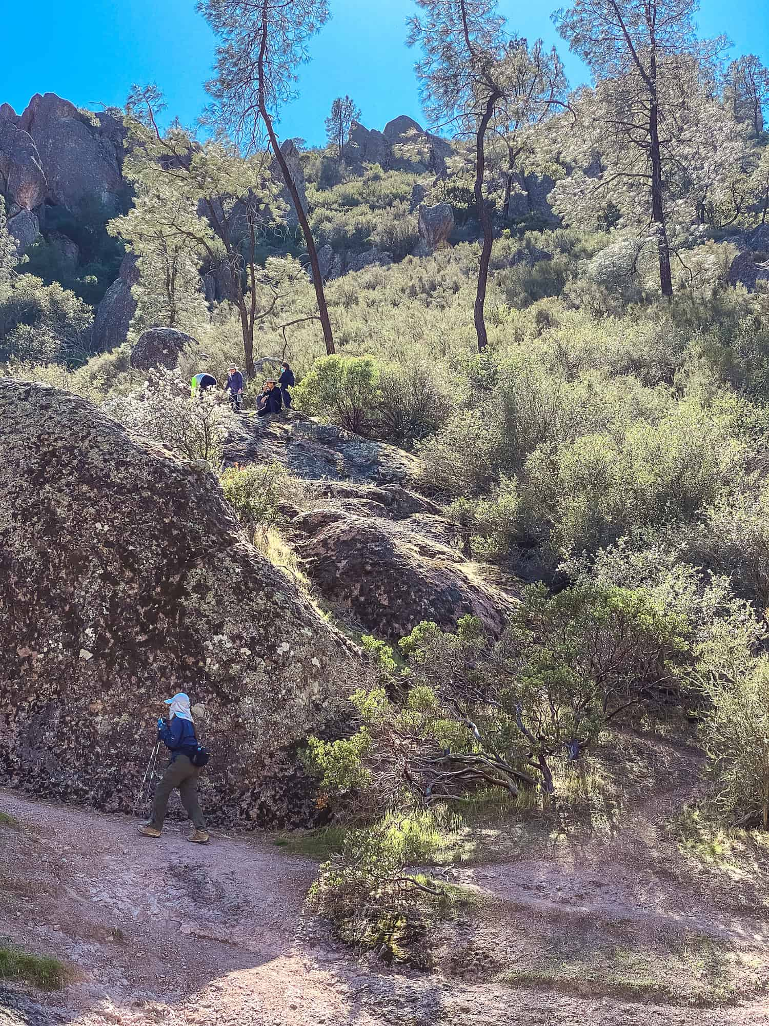 Pinnacles National Parks Hikes - Group Hiking