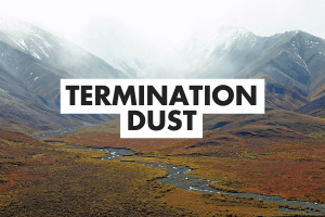 Termination Dust Definition Card