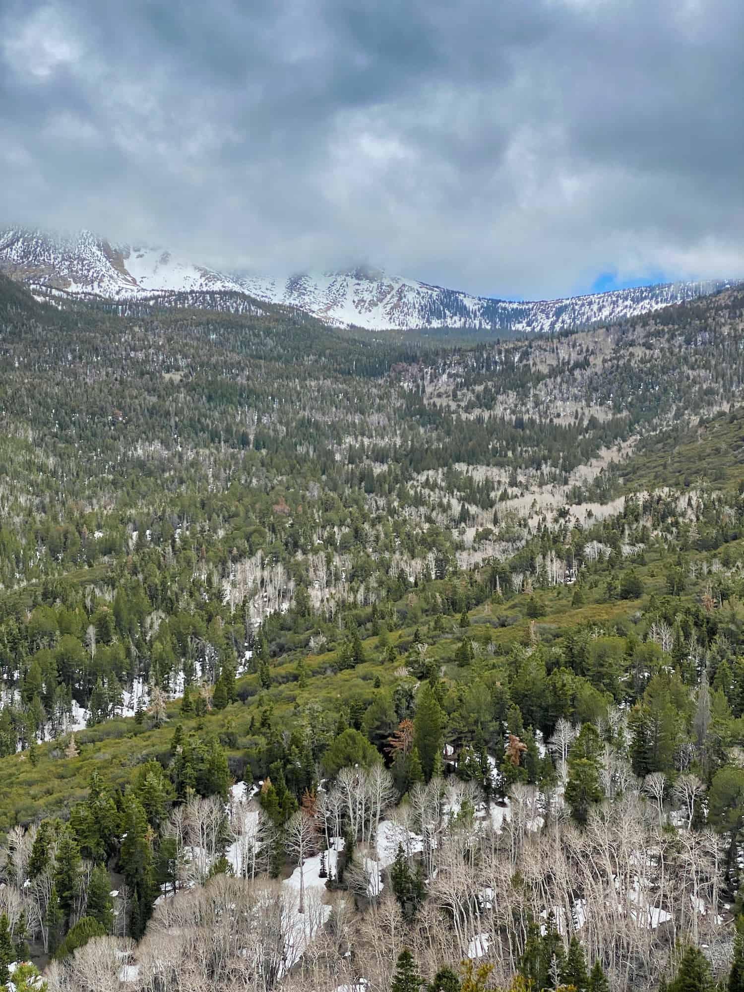 One Day in Great Basin - The View Toward Wheeler Peak
