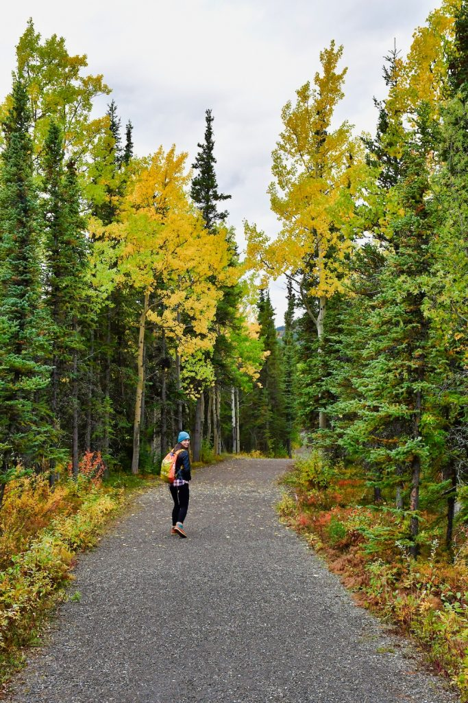 How to Plan a Trip to Alaska - Hiking in Denali