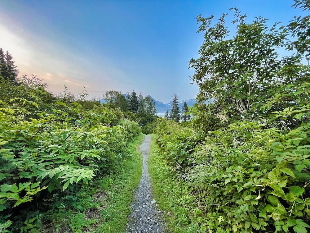 John Hall's Alaska Review - Day 2 - Valdez Dock Point Trail