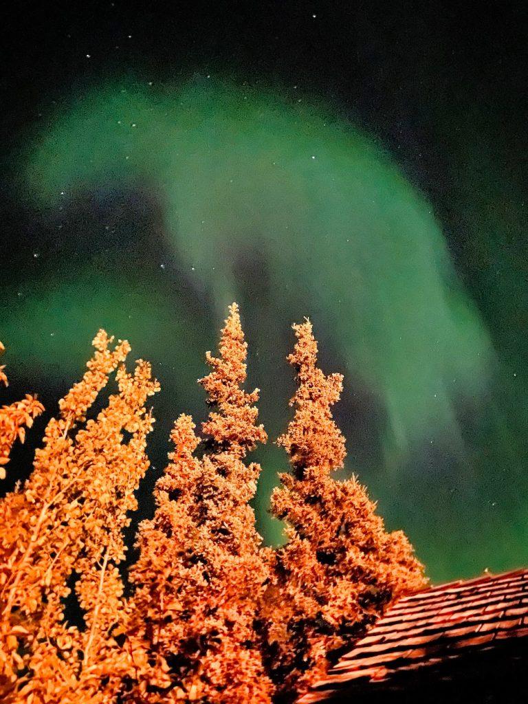 Denali National Park Itinerary - Grande Denali Aurora
