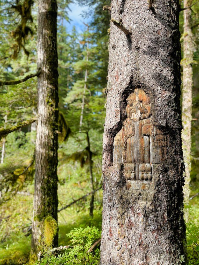 One Day in Glacier Bay - Hiking