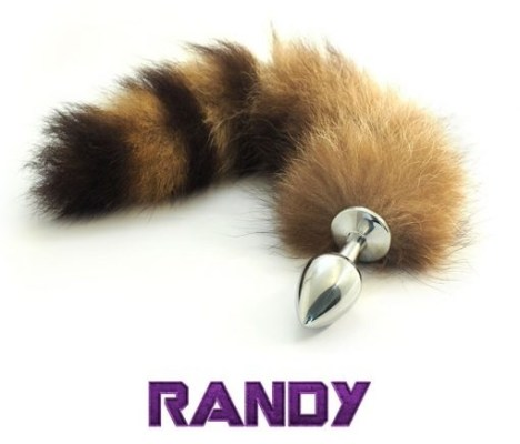 randy-rocket-raccoon-guardiani-galassia