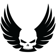 VALKYRIE DEFENSE LLC's Company logo