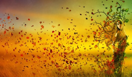autumn_girl_leaves_nature_3617_1920x1080