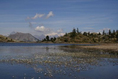 lago bianco rid