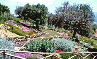 Il Giardino officinale di Morro d'Oro