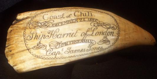 Ship HARRIET, Sperm Whale Tooth. American Whaleman's Scrimshaw at the Vallejo Gallery, USA