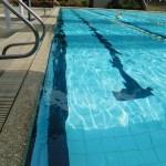 pool6web