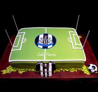 B358 Newcastle United Football Field