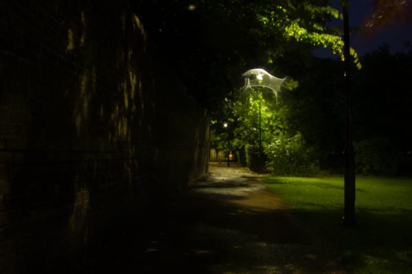 dark-rain-14